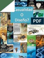 Casualidad o Diseño 2011-01 a 2014-07