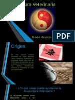 Acupuntura y cromoterapia Veterinaria.pptx