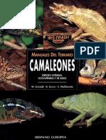 Animales Manuales de Terrario Camaleones