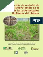 Producción de semilla de plátano libre de enfermedades, FAO.pdf