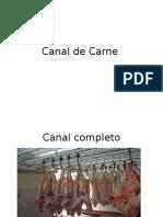 Canal de Carne