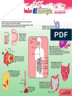 Ficha Resumo de Biologia