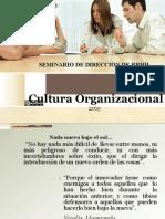 Cultura Orgcultura
