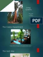 living systemspp