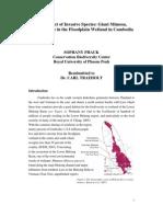 The Impact of Invasive Species Mimosa Pigra in Cambodia