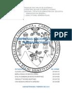 Empresas Nacionales y Transnaciones