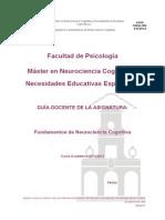 315541102 Fundamentos de Neurociencia Cognitiva.pdf
