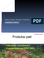 karbohidrat_2011