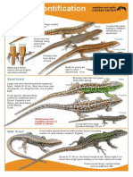 ARC Reptile Guide 2013