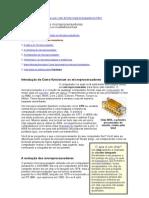 Microprocessadores - Introducao