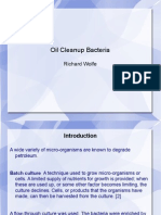 Oil Cleanup Bacteria