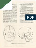 (Bustamante, 1978) Neuroanatomía Funcional_24b.aparato Vestibular