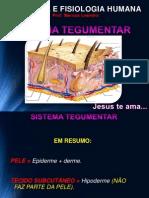 pele.pdf