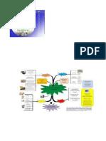 desarrollo endogeno1