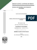 MODELACIÓN DE SOLUTOS EN REDES DE DISTRIBUCIÓN DE AGUA POTABLE