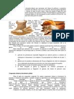 Proiect Faina-legislatia