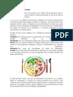El Plato Del Buen Comer caractersticas