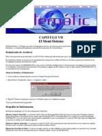 Manual de Sistematic - CAPITULO VIII