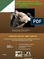 Inseminación Artificial. Uso de semen de toros nacionales