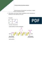 AnexoCorreioMensagem 880498 Topicos Estrutura e Funcao de Biomoleculas Organicas i (1)