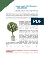 7 Principios Básicos Para La Salud Financiera de La Empresa