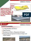 Recovery Optimization With a Thermal Pilot - Mesa Trabajo INTEVEP-EMs-11!17!10