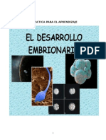 Guia de Actividades Sobre El Desarollo Embrionario Humano