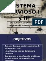 Histologia - SNC y SNP