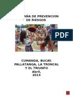 CAMPANA_GESTION_DE_RIESGOS.doc