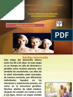 Adultez Intermedia