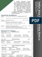 Resumen Profesional 2013