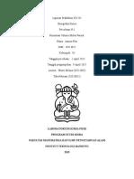 Laporan Praktikum KI2241 volume molar parsial.docx
