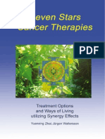 7 Stars Cancer Therapies - Excerpt - Content & Meditation of Silence