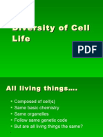 Diversity of Cell Life End of Ch7
