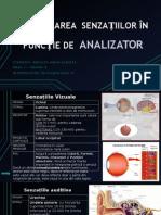 Clasificarea Senzațiilor În Funcție de Analizator