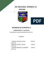 Informe  de Lixiviacion Ing 2
