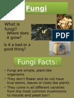 fungi2 pptx jennifer