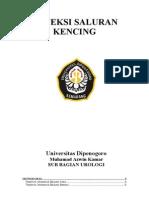 INFEKSI SALURAN KENCING Tugas Azwin Dari Prof Rifky
