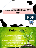 Ppt Analisis Mineral (Revisi)