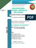 Informe Deming