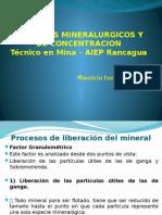 Concentración minerales