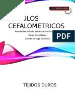 Anguloscefalometricos
