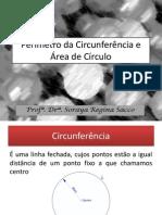 Área Do Círculo e Perimetro Da Circunferencia