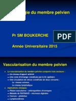 27 Anat Cours Angiologie Du Membre Pelvien 2015