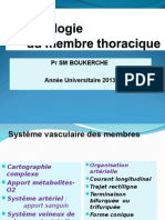 16 Anat Cours Angiologie Mth 2014