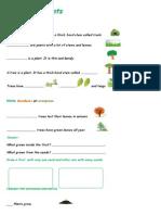 41357_plants.docx