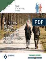 GUIA_MAYORES_CAS.pdf