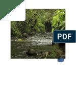 Informe Subcuenca Rio Frio
