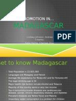 nurs 250 madagascar presentation (1)