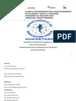 Apoyo Técnico-pedagógico Programa E.F. Primaria 2014-2015